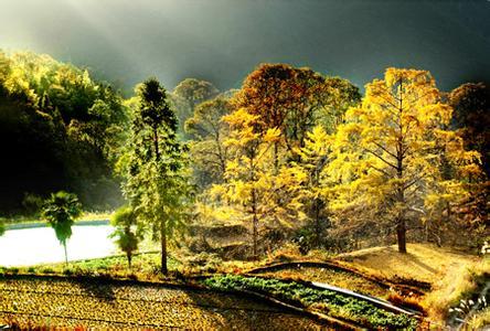 灵川天气预报30天查询,灵川县一个月天气