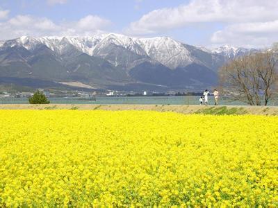 旺苍天气预报30天查询,旺苍县一个月天气